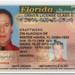 Kraftwerk Driver's License by Kraftwerk Endless