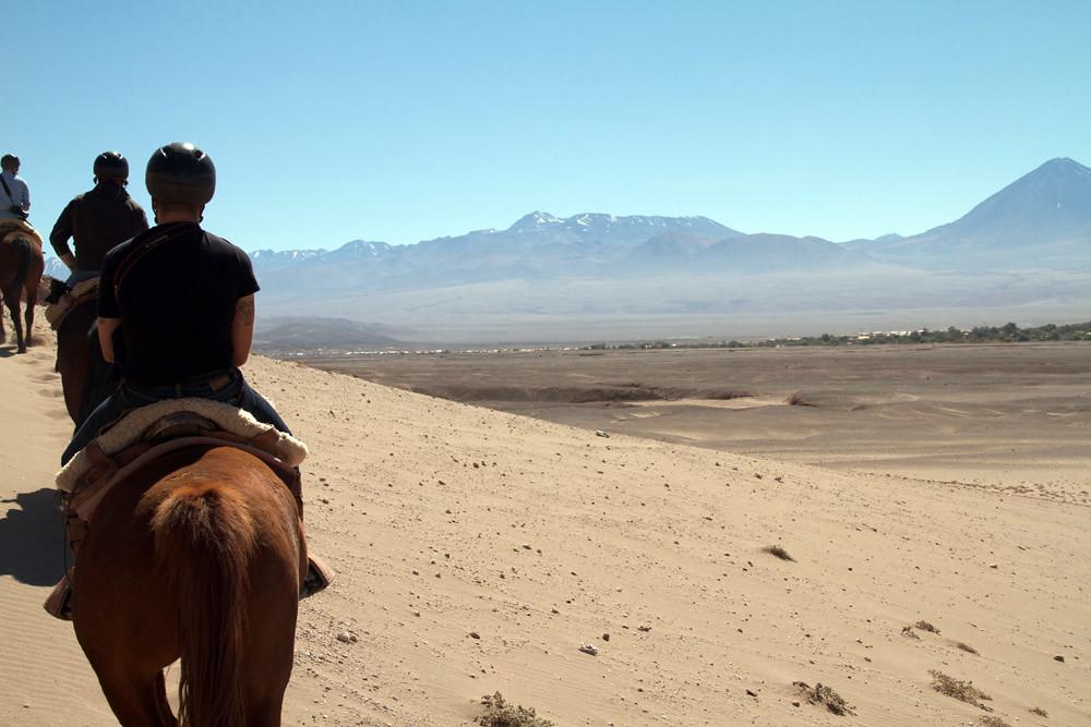 cheval Atacama4