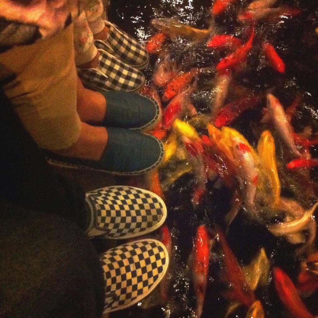 Fish Koi #koifish #vans #shoes #vansfamily Amabel Wardana  Amabel Wardana