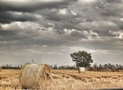 #Hay #bales & #thunderstorm