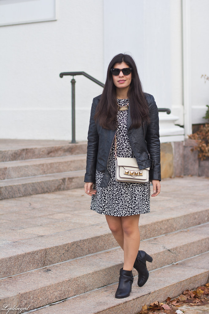 leopard dress, leather moto jacket, studded bag.jpg