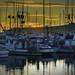 Sundown at Pillar Point Harbor, #2