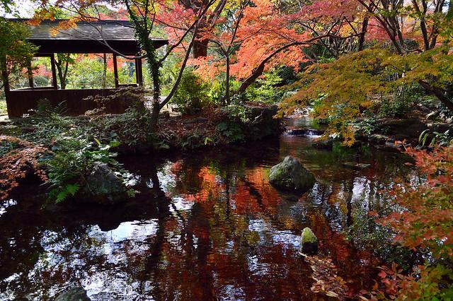 晩秋の石橋文化センター