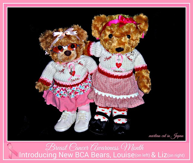 Introducing New BCA Bears, Louse & Liz.