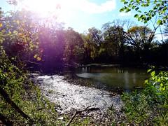 Forest City Community Park (12)