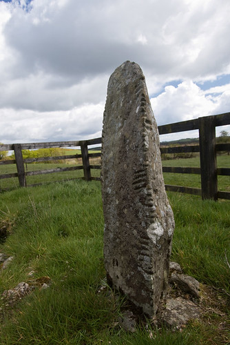 Drumlohan Ogham Stones