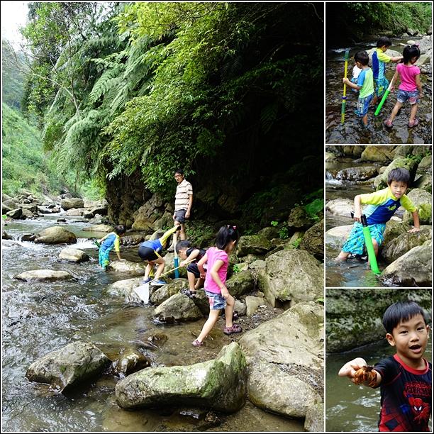go up the stream