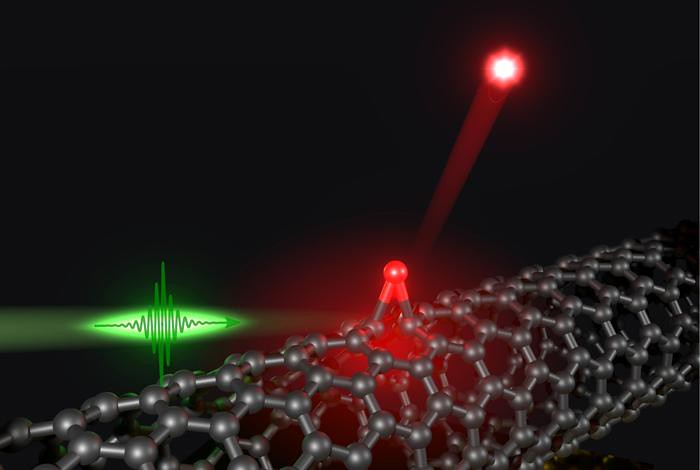 A solitary oxygen dopant (red sphere) covalently attached to the sidewall of the carbon nanotube (gray) can generate single photons (red) at room temperature when excited by laser pulses (green).