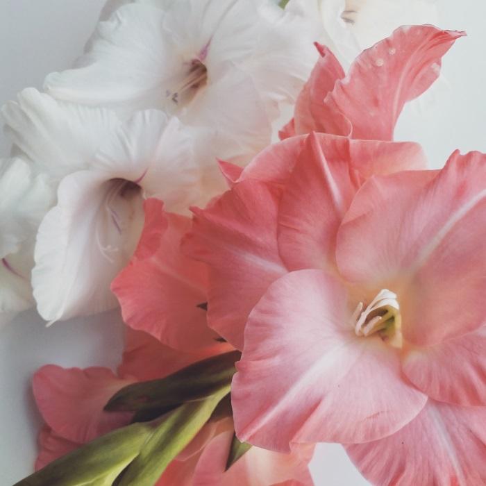tuum, wildflower girl, fashion blog, fiori (3)