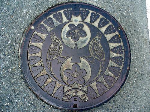Hiyoshi Kyoto, manhole cover (京都府日吉町のマンホール)