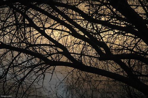 sunset hiver crépuscule manche cotentin