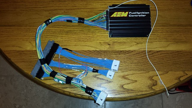 AEM Harness 4 (Small)