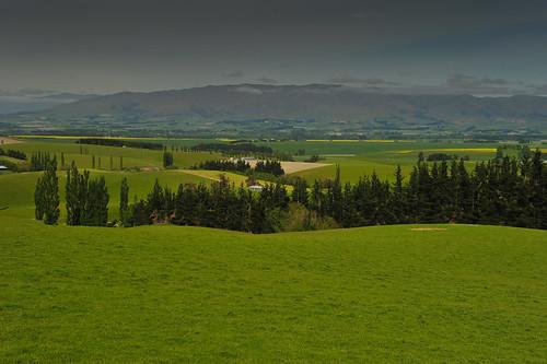 newzealand canterbury southisland geraldine fairlie