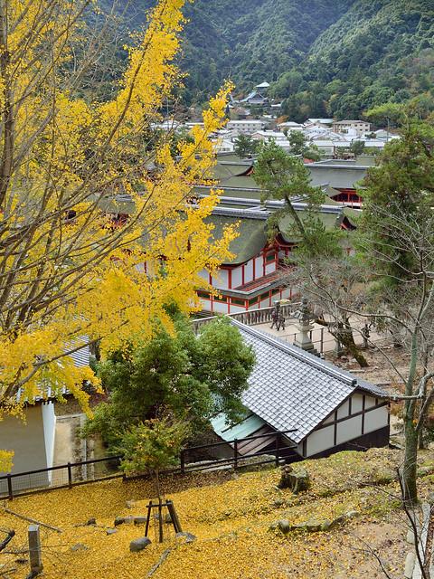 豊国神社からの眺め