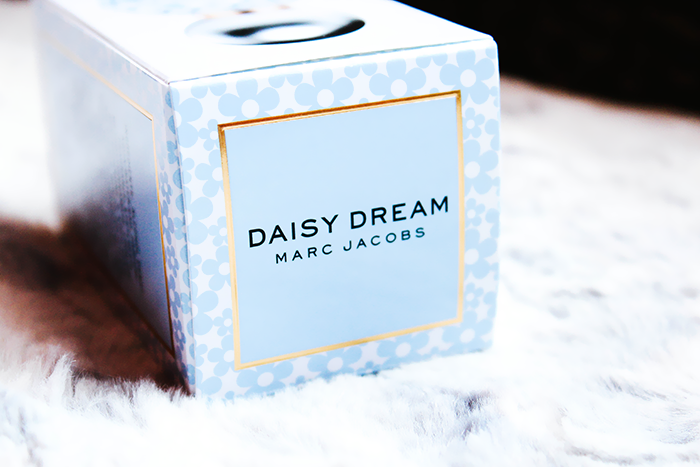 Daisy Dream 6