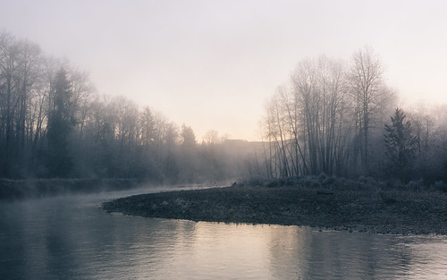 morning trees nature sunrise river washington steam pacificnorthwest carnation canonef2470mmf28lusm toltriver canoneos5dmarkiii