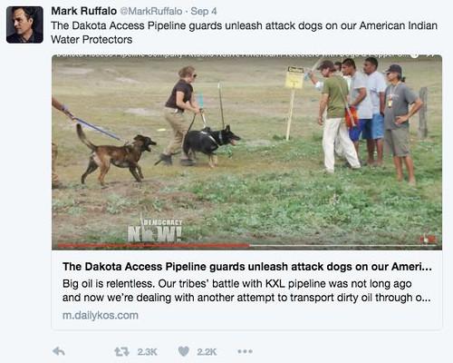 Mark Ruffalo tweeted my diary