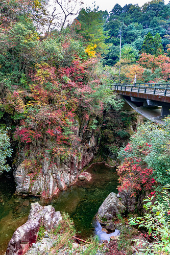 nibukawa valley imabari ehime shikoku japan autumn river fall leaves nikon d7200 sigma 1770mm 1770 landscape scenery