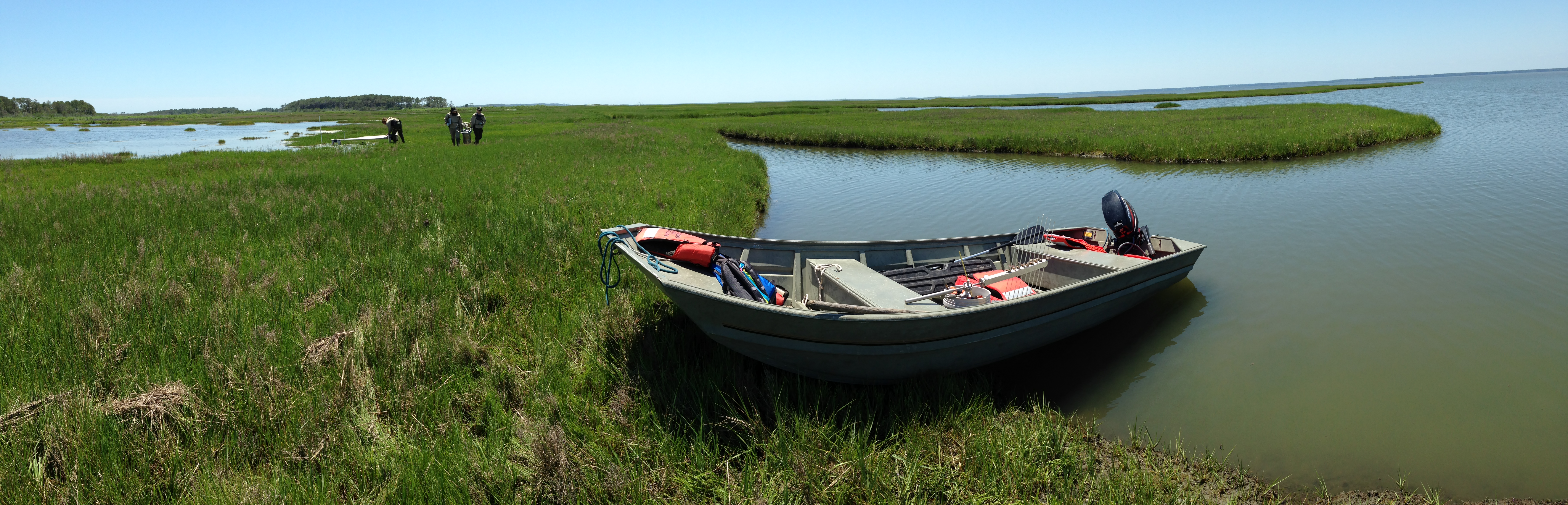 Jim and a team of NPS scientists haul gear by boat and on foot into wetlands in coastal National Parks to study whether salt marshes are building up sediment fast enough to keep pace with sea level rise. NPS photo/J. Lynch.