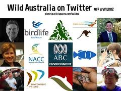 Wild Australia on Twitter #ff #wildoz @ProfTerryHughes @jones_ann @ABCenvironment @StevenJMiles @NACC_NRM @Parks_Australia @Wilderness_Aus @EnviroVic @ConservationSA @ChristineMilne @nrsamdb @BirdlifeOz