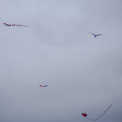 sports, windsports, line, kite, sport kite, flight,