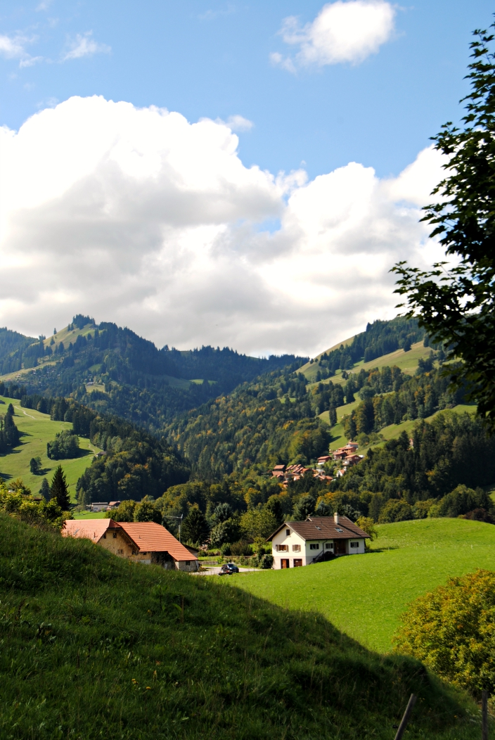Gruyere Villa_ Switzerland (02)