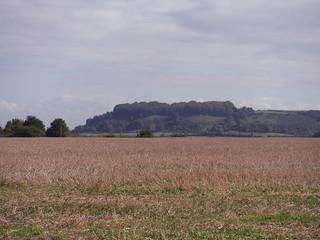 Sharpenhoe Hillfort Site from Harlington