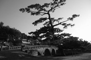 Kgoshima on OCT 24, 2015 (6)