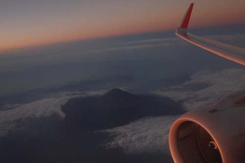 wing with Mt.FUJI