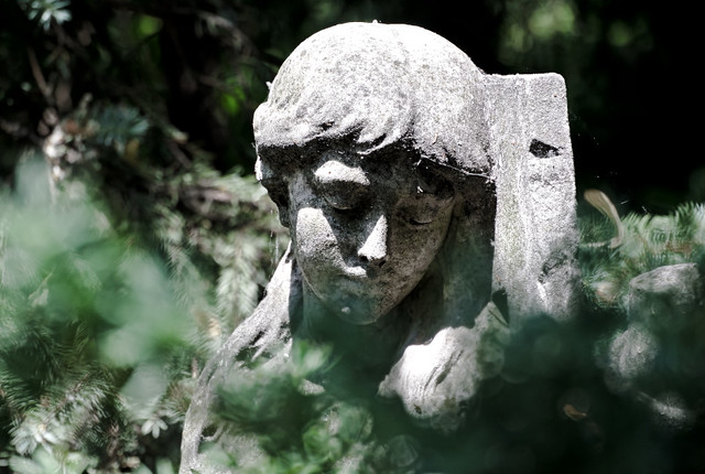 St. Marien, St. Nikolai Friedhof I_2015-37