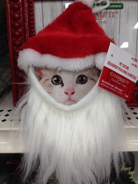 Santa pet costume.