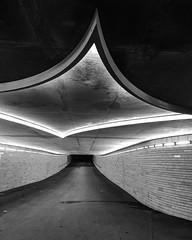 Tunnelblick #Sternschanze