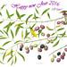 Auguro a tutti un buon 2016. I wish everyone a good 2016. Ich wuensche jedem ein gutes 2016. by ciuccio51