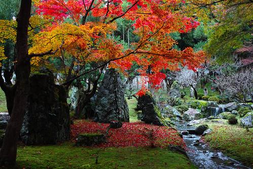 京都:しょうざんリゾート庭園