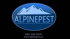 Alpine Pest Control Ltd -- Vancouver