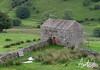 Old Stone Barn
