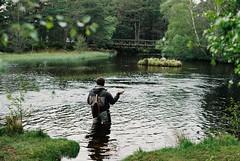 wetland, fishing, recreation, fish pond, outdoor recreation, lake, recreational fishing, wilderness, fly fishing, pond,