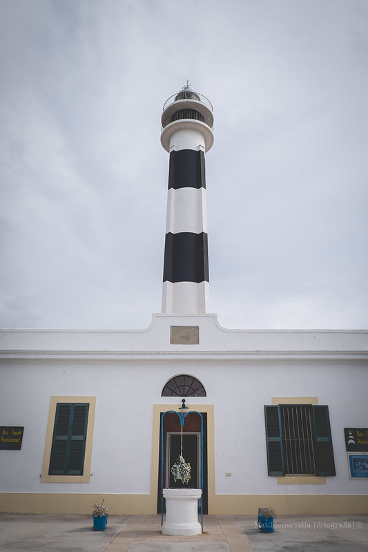 Faros 2015