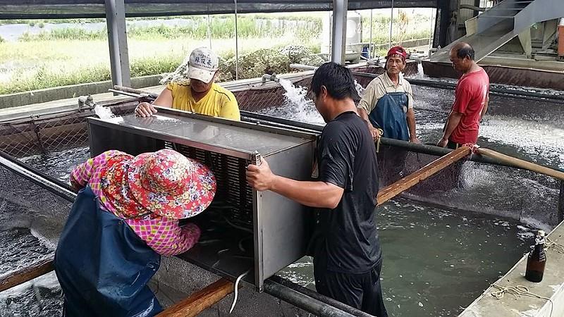 嘉義東石漁村體驗小旅行09