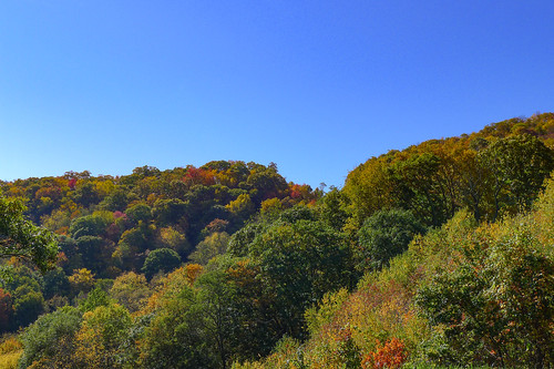 Blue Ridge Parkway in Autumn-5