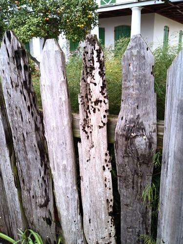 Pitot House - pieux fence