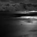 moonlight crossing by ecstaticist