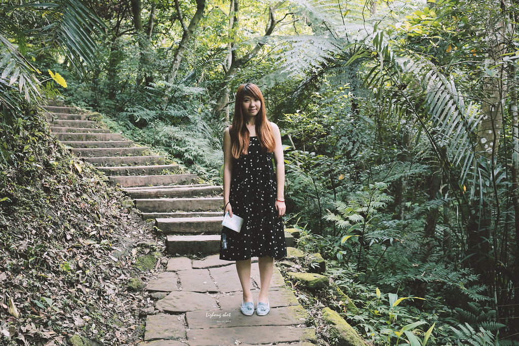 這淡淡的詩意襲上之桐花公園