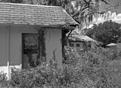 Abandoned Motel #7