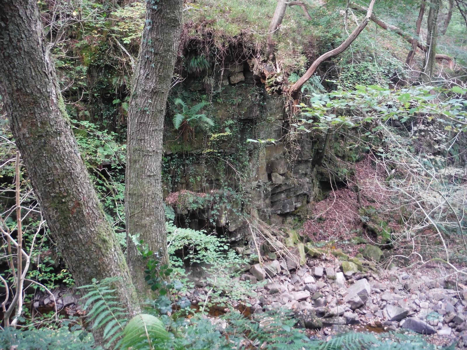 In the Nant Llech Valley SWC Walk 280 Henrhyd Falls - Sgwd Henrhyd (Craig y Nos Circular)