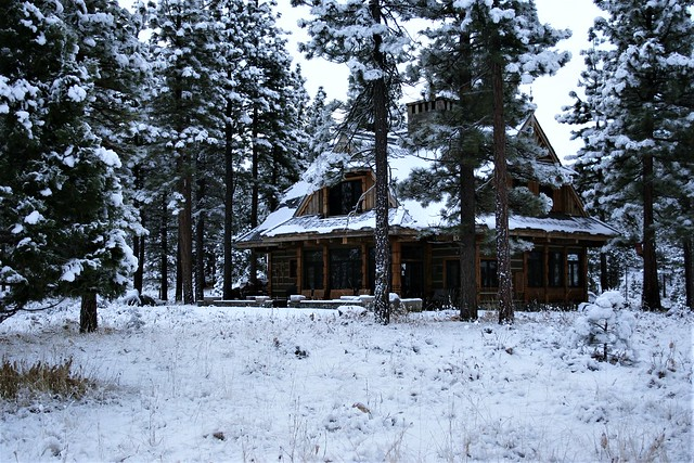 Fresh Snow at the Cabin
