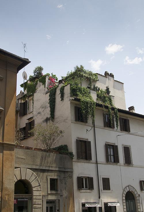 Rome Via della Dogana Vecchia