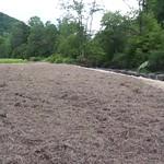 Sands Creek Site 5