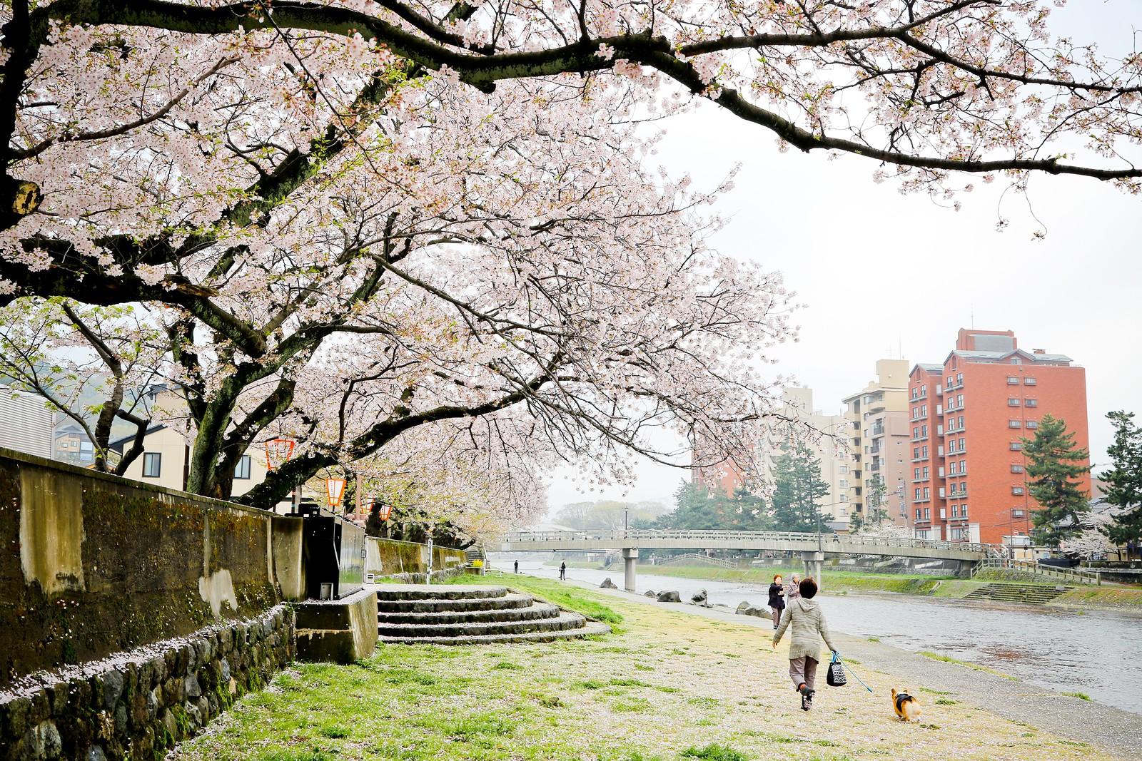 2015 April Kanazawa Part A 60