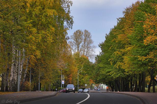 autumn_roads_06